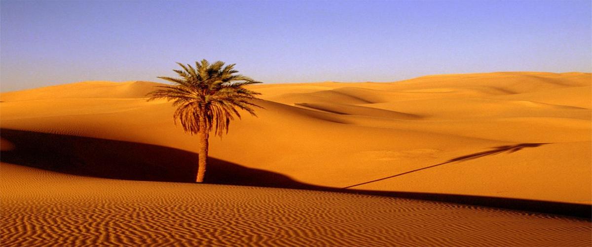 South Morocco Tour Fes Desert 3 Days